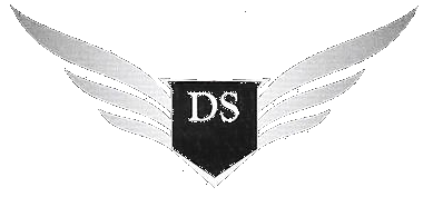 DS Limousinen Service